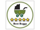 best-buggy-5star